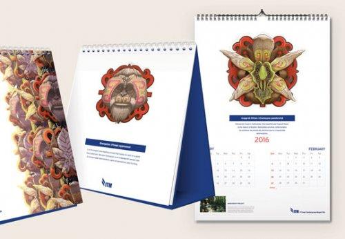 i_calendari